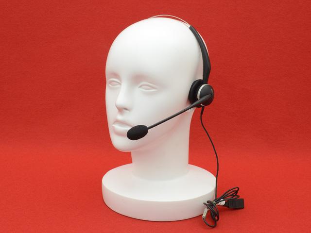 GN2100(Mono)(VoIP)(2186-82-109)
