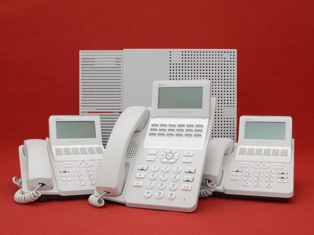 NTTαN1セット(ひかり電話フリータイプ)
